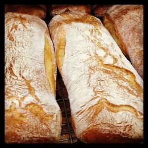 Ciabatta Loaves